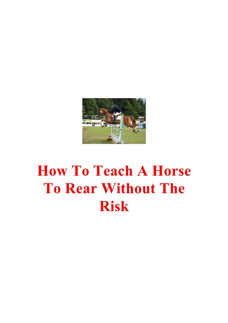 How To Teach A Horse  To Rear Without The          Risk