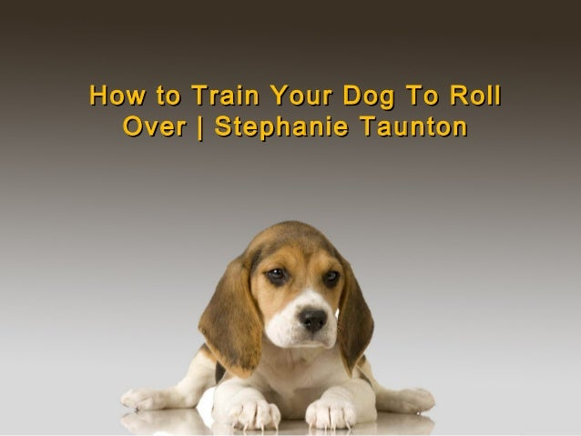 How to Train Your Dog To RollHow to Train Your Dog To Roll Over | Stephanie TauntonOver | Stephanie Taunton