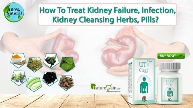 How to Treat Kidney Failure, Infection, Kidney Cleansing