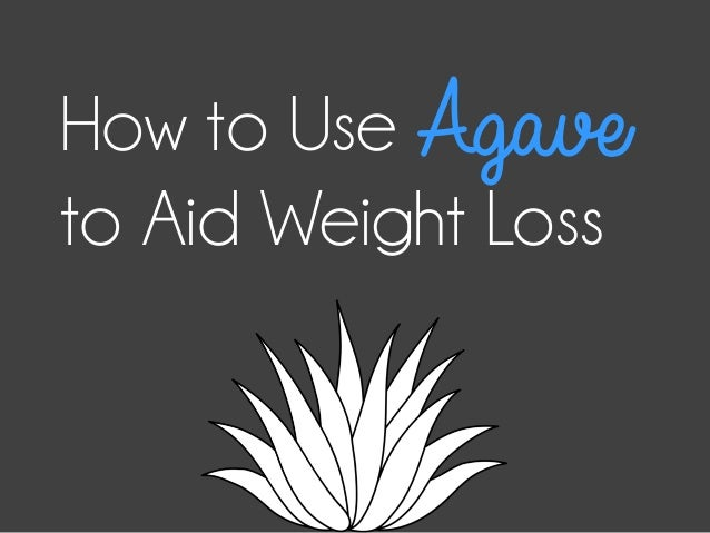 How to UseAgave to Aid Weight Loss