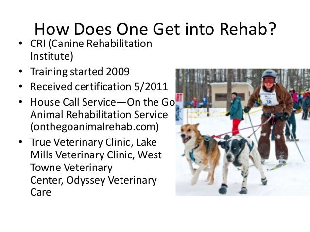 How Does One Get into Rehab?  • CRI (Canine Rehabilitation Institute) • Training started 2009 • Received certification 5/2...