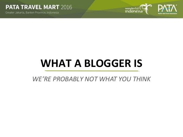 WE'RE PROBABLY NOT WHAT YOU THINK WHAT A BLOGGER IS