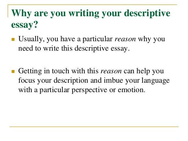 Cheap essays editor websites for university
