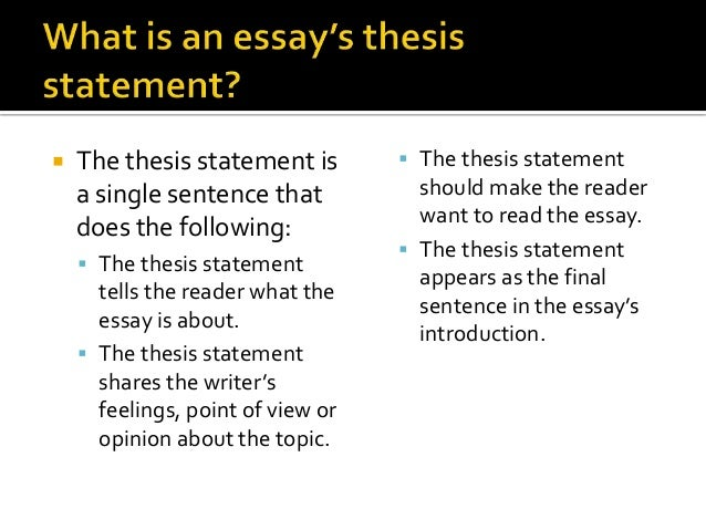 Shark Essay Titles Examples - image 4
