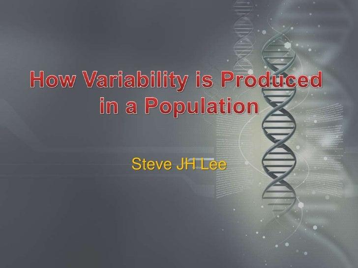 Steve JH Lee