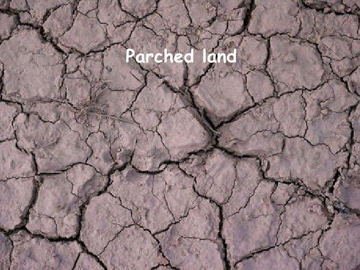 Parched land