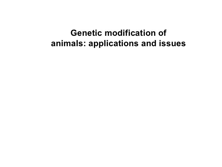 Genetic modification of animals: applications and issues