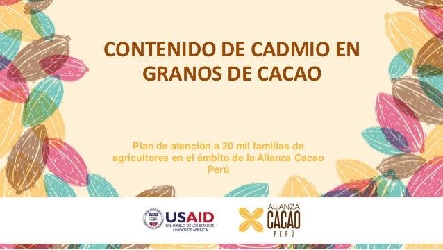 CONTENIDO DE CADMIO EN GRANOS DE CACAO Plan de atención a 20 mil familias de agricultores en el ámbito de la Alianza Cacao...