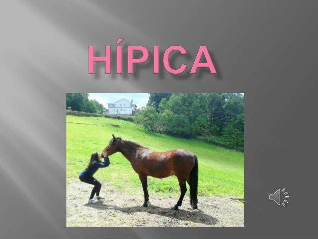 La equitación es el arte o la práctica de montar a caballo. Más específicamente, la equitación puede referir a la posición...