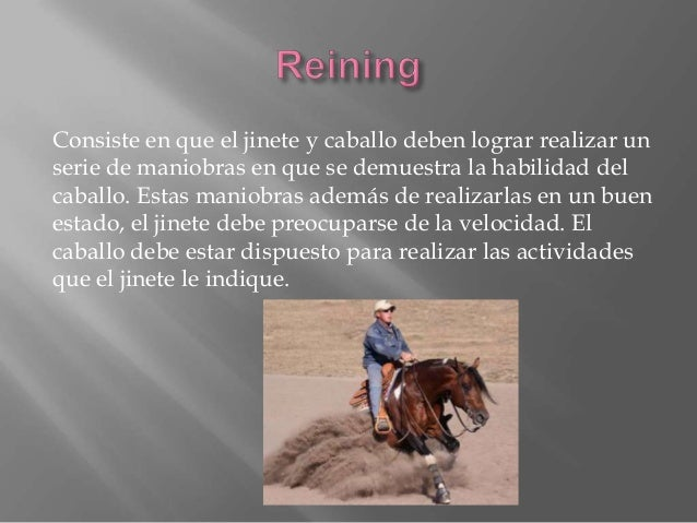 """El volteo es una disciplina de la equitación. Está definido como gimnasia sobre un caballo al galope en círculo, guiado """"a..."""