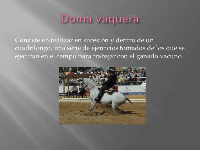 Consiste en ejecutar una serie de ejercicios en coche de caballos. Tienen también pruebas de Doma, y manejabilidad. Los ob...