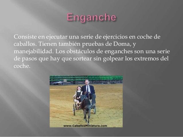 Consiste en que el jinete y caballo deben lograr realizar un serie de maniobras en que se demuestra la habilidad del cabal...