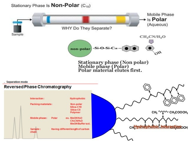 Mechanism of separation in paper chromatography