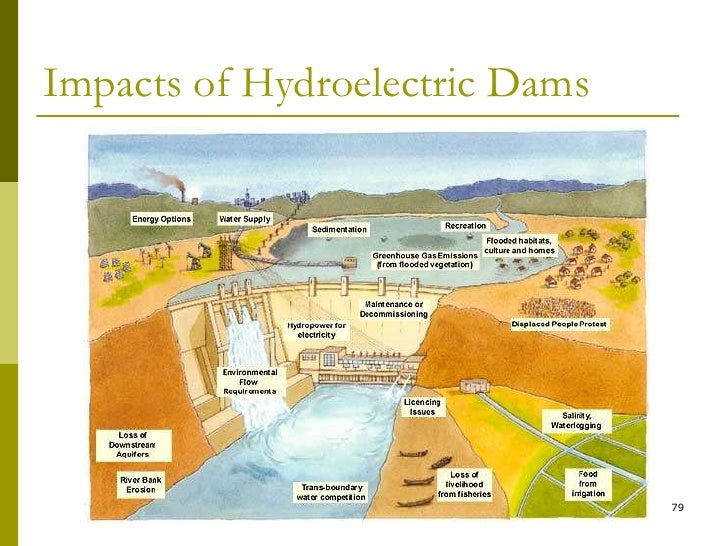 Health and social impacts of large dams