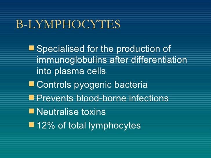 B-LYMPHOCYTES <ul><li>Specialised for the production of immunoglobulins after differentiation into plasma cells </li></ul>...