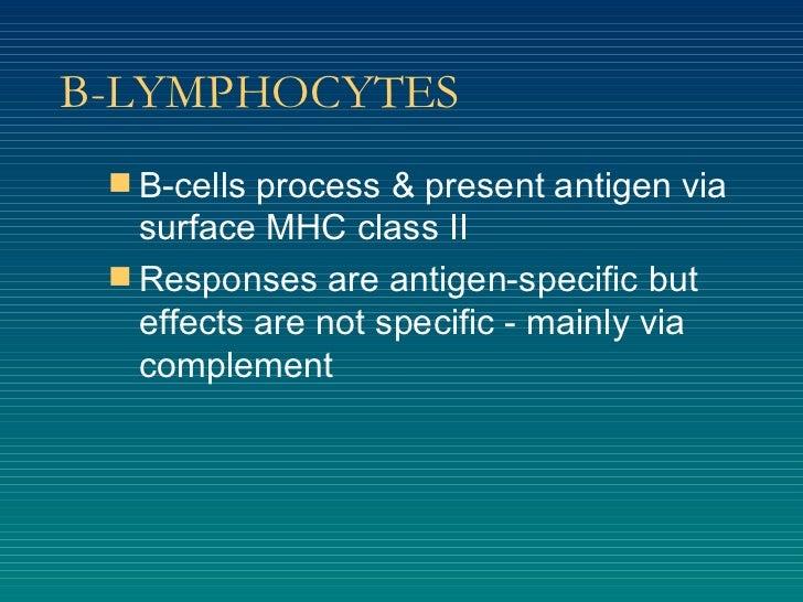 B-LYMPHOCYTES <ul><li>B-cells process & present antigen via surface MHC class II </li></ul><ul><li>Responses are antigen-s...