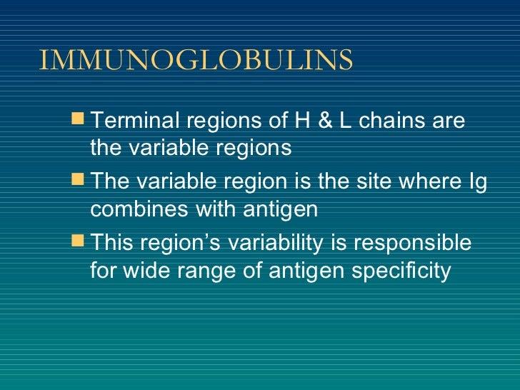 IMMUNOGLOBULINS <ul><li>Terminal regions of H & L chains are the variable regions </li></ul><ul><li>The variable region is...