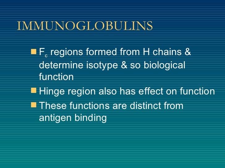IMMUNOGLOBULINS <ul><li>F c  regions formed from H chains & determine isotype & so biological function </li></ul><ul><li>H...