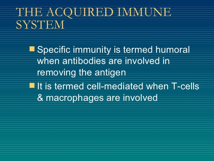 THE ACQUIRED IMMUNE SYSTEM <ul><li>Specific immunity is termed humoral when antibodies are involved in removing the antige...