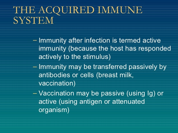 THE ACQUIRED IMMUNE SYSTEM <ul><ul><li>Immunity after infection is termed active immunity (because the host has responded ...