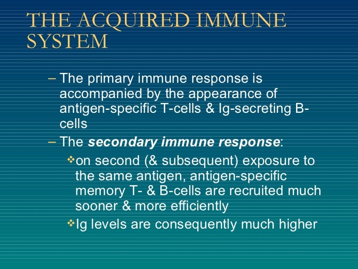 THE ACQUIRED IMMUNE SYSTEM <ul><ul><li>The primary immune response is accompanied by the appearance of antigen-specific T-...