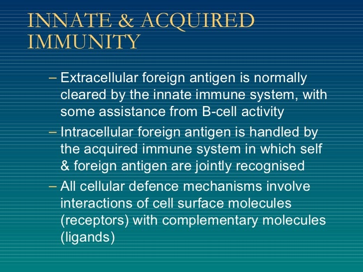 INNATE & ACQUIRED IMMUNITY <ul><ul><li>Extracellular foreign antigen is normally cleared by the innate immune system, with...