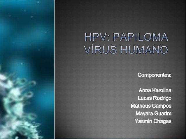 Componentes: Anna Karolina Lucas Rodrigo Matheus Campos Mayara Guarim Yasmin Chagas