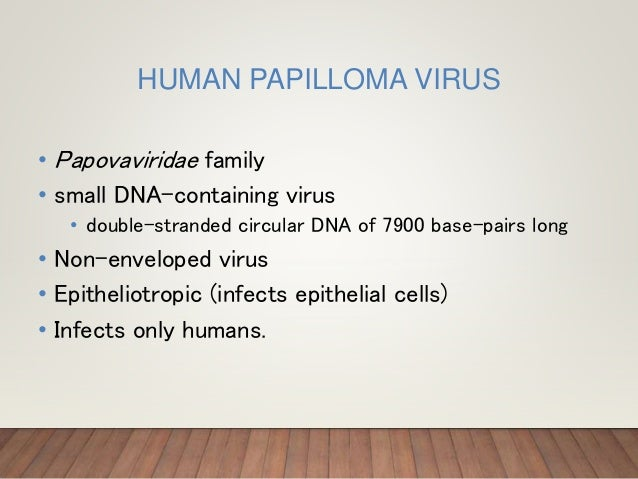 HUMAN PAPILLOMA VIRUS • Papovaviridae family • small DNA-containing virus • double-stranded circular DNA of 7900 base-pair...