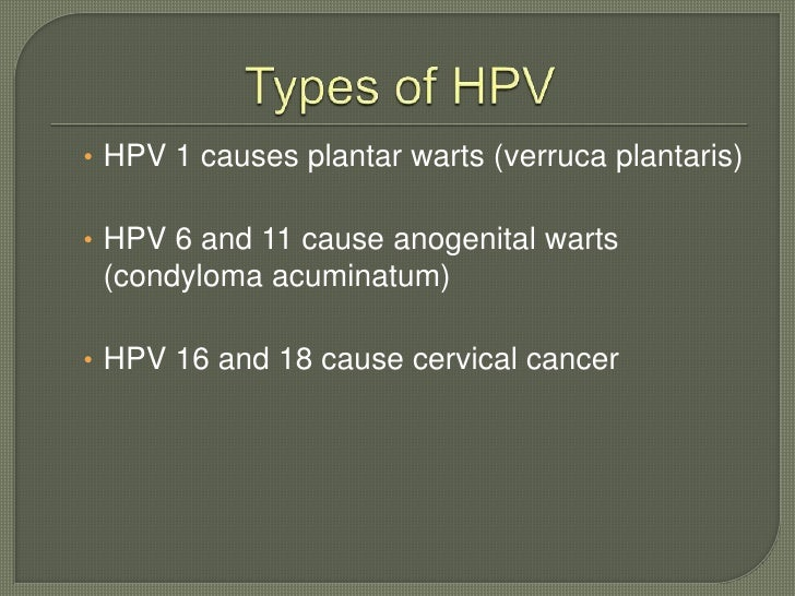 Cervical Cancer Significance Of Hpv 16 18: Hpv Educational Presentation