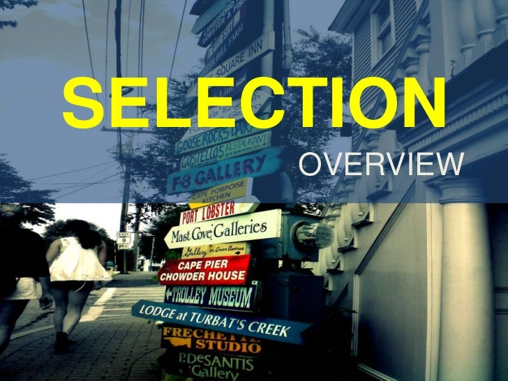 SELECTION<br />OVERVIEW<br />