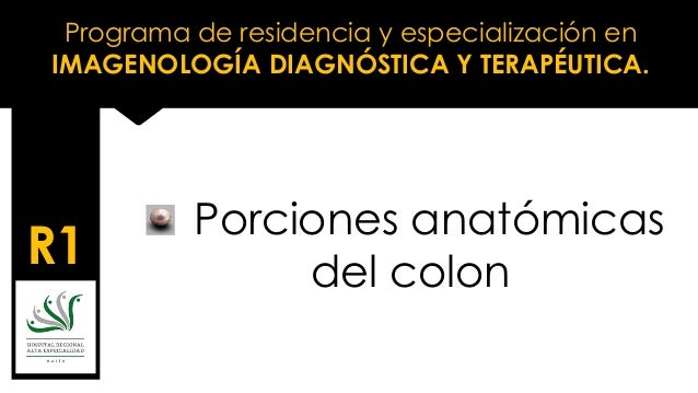 Programa de residencia y especialización en IMAGENOLOGÍA DIAGNÓSTICA Y TERAPÉUTICA. R1 Porciones anatómicas del colon