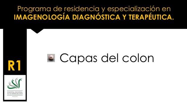 Programa de residencia y especialización en IMAGENOLOGÍA DIAGNÓSTICA Y TERAPÉUTICA. R1 Capas del colon