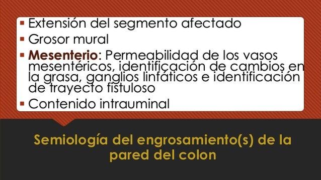 Semiología del engrosamiento(s) de la pared del colon § Extensión del segmento afectado § Grosor mural § Mesenterio: Perme...