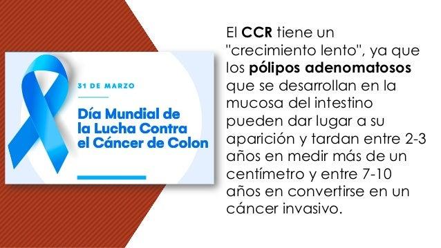 """El CCR tiene un """"crecimiento lento"""", ya que los pólipos adenomatosos que se desarrollan en la mucosa del intestino pueden ..."""