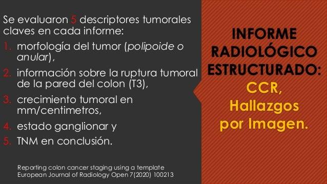 Se evaluaron 5 descriptores tumorales claves en cada informe: 1. morfología del tumor (polipoide o anular), 2. información...