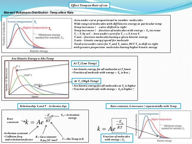 Effect Temp on Rate of rxn • Area under curve proportional to number molecules • Wide range of molecules with diff kinetic...