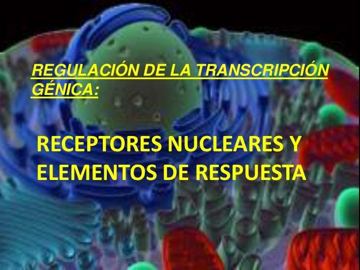 llos<br />REGULACIÓN DE LA TRANSCRIPCIÓN<br />GÉNICA:<br />RECEPTORES NUCLEARES Y ELEMENTOS DE RESPUESTA<br />