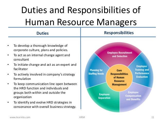 ROLE OF HUMAN RESOURCE MANAGER DOWNLOAD