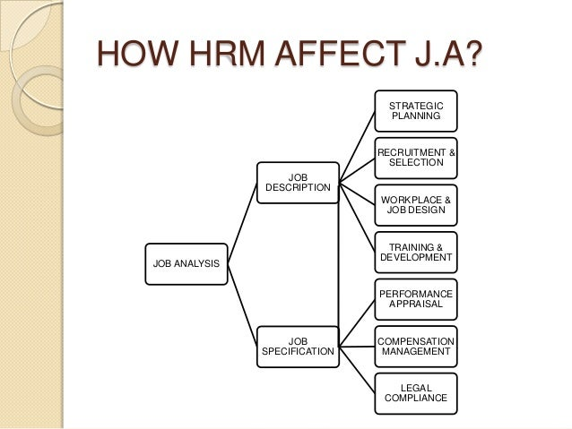 hrm job analysis and techniques Excellent hr tools and great presentation about hr management, hr strategy and career management, human resource management, job analysis is the process of determining the nature or content of a job by collecting and organizing information relevant to the job  interview techniques (3) questionnaires, including job inventories or checklists.