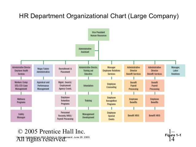 human resources organizational chart human resources