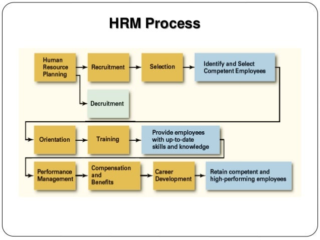 hrm selection process Today, the human resource selection process plays a vital role in the production and performance value business receive by making good hires and the high costs of replacing employees following bad hires.