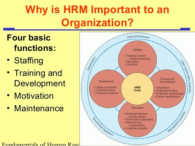 hrm function List of the major functions of the human resource unit these functions are linked to labor laws and employee relations recruitment and selection the hr department finds the right people for open positions [human resource management] | jobs that require a master's in human resource.