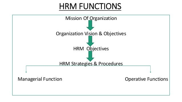 hrm function The human resource staffing function includes responsibility for  identify hr  competencies for strategic human resource management.