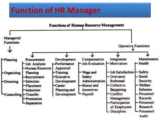 Functions And Structure Of Human Resource
