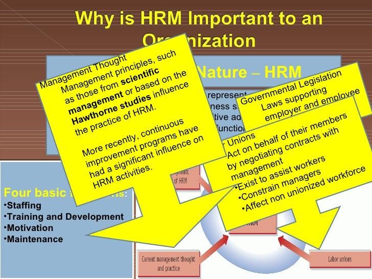 Garmin HRM-TRI & HRM-SWIM In-Depth Review