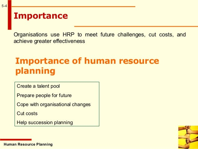 importance of human resource planning in organisation Need basic information about human resources strategic planning  see these sample human resource management job  learn about the importance of human.