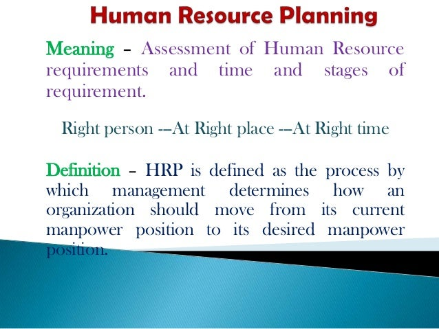 explain the process of human resource planning