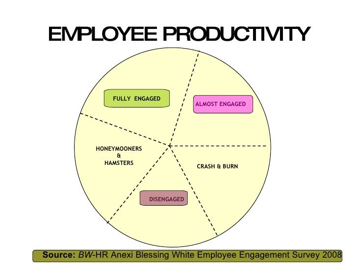 EMPLOYEE PRODUCTIVITY FULLY  ENGAGED Source:   BW -HR Anexi Blessing White Employee Engagement Survey 2008 ALMOST ENGAGED ...