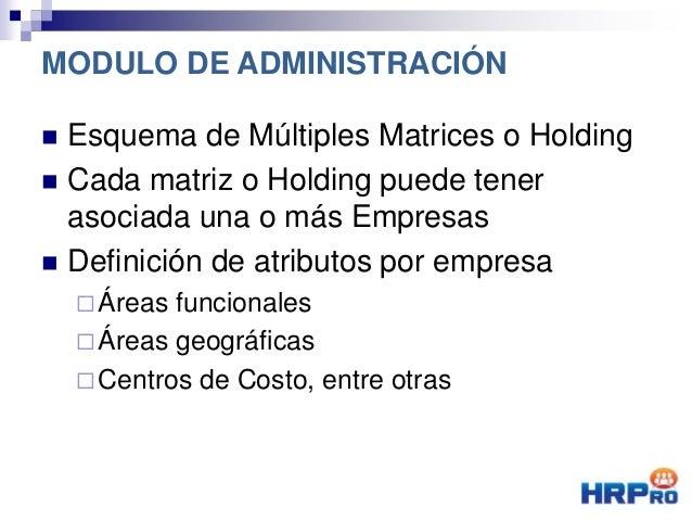  Esquema de Múltiples Matrices o Holding  Cada matriz o Holding puede tener asociada una o más Empresas  Definición de ...