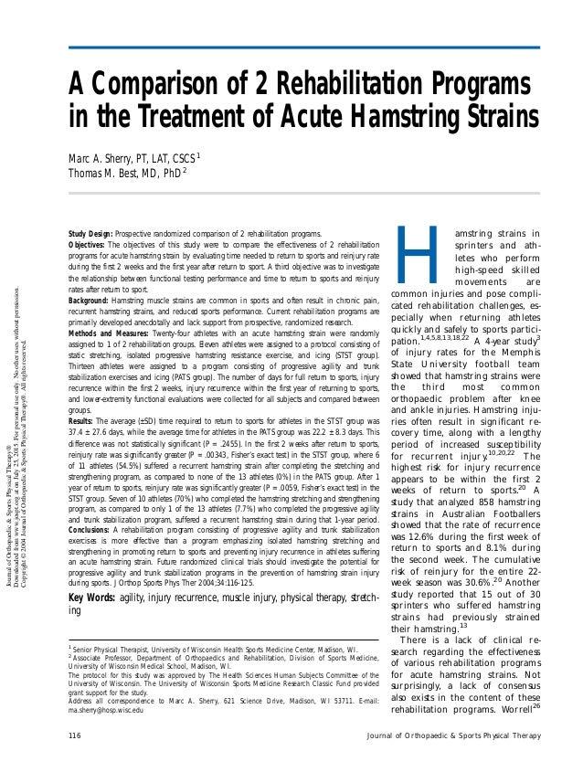 hamstring rehabilitation program